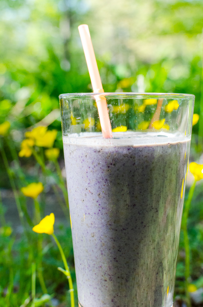 Avocado Blueberry Breakfast Smoothie - the vegan and gluten-free recipe makes an easy morning meal - but feel free to enjoy it any time! | VeggiePrimer.com