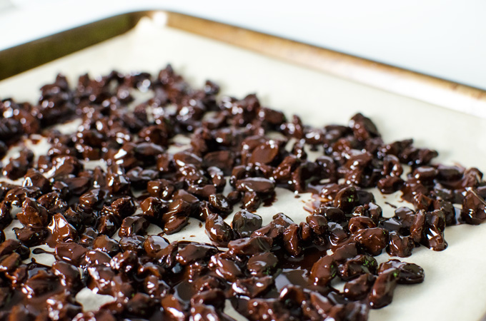 Homemade Chocolate Covered Raisins - this super easy vegan gluten-free recipe combines the pure rich flavor of homemade chocolate with the naturally sweet taste of raisins | VeggiePrimer.com