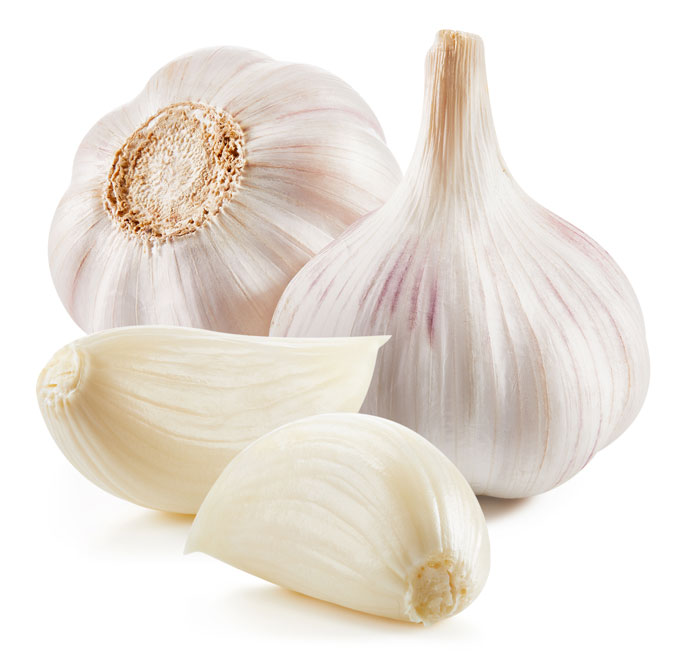 two heads of garlic with two cloves on a  white background